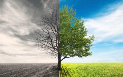 7 uvědomění, které vám může přinést bouračka